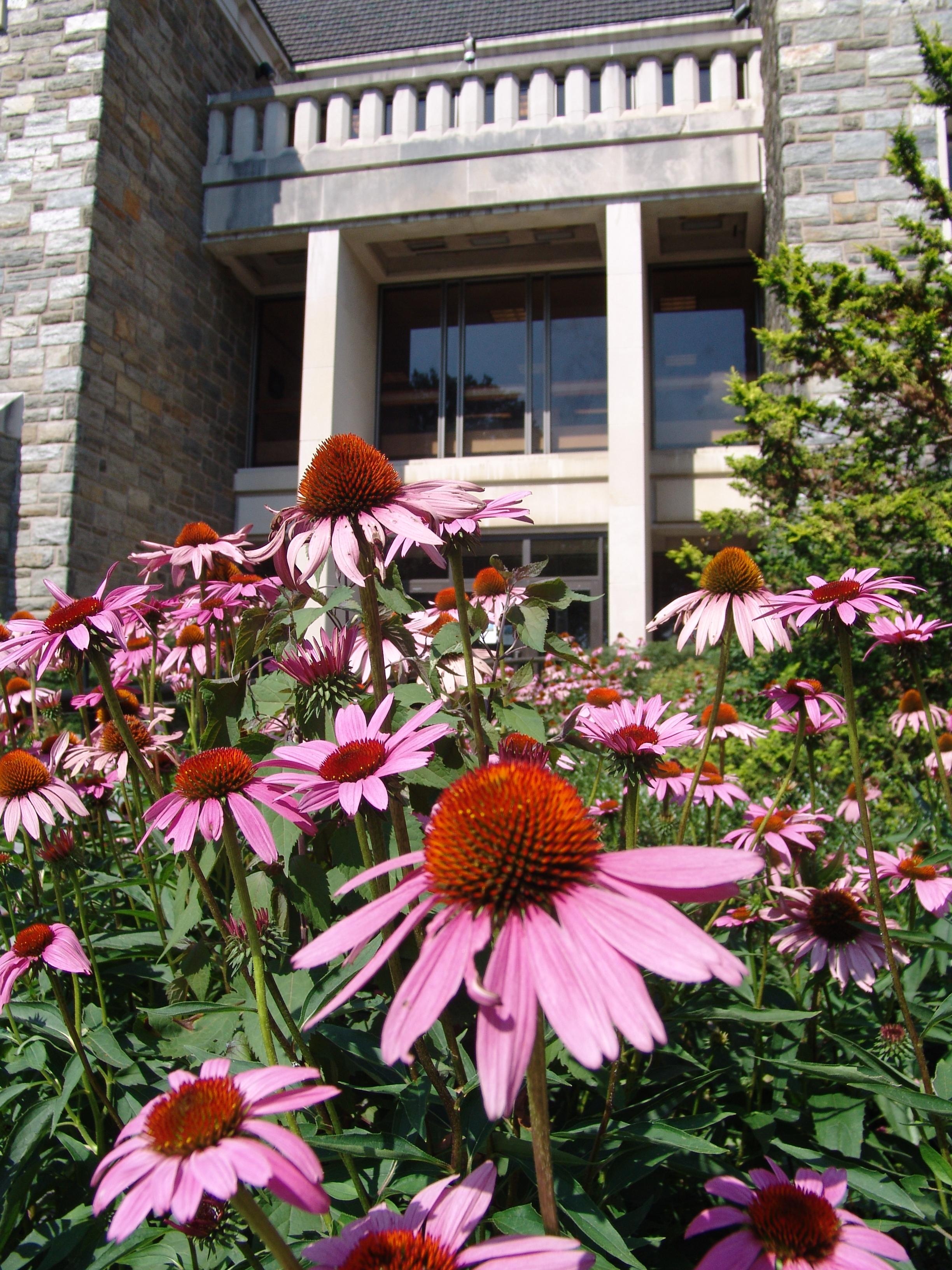 Scott Arboretum Exterior